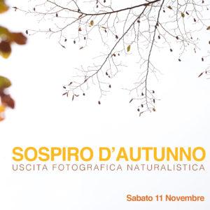 Uscita fotografica autunno 2017_quadrata